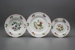 Plate set Ofelia Forest berries 12-piece FCL