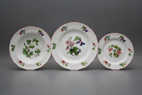 Plate set Ofelia Forest berries 36-piece FCL