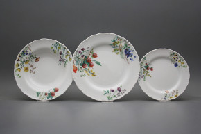Plate set Ofelia Flowering meadow 24-piece CBB