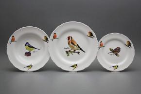 Plate set Ofelia Bird world 12-piece GBB