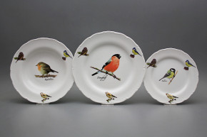 Plate set Ofelia Bird world 18-piece GBB