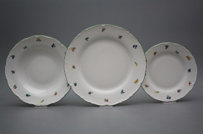 Plate set Ofelia Sprays 24-piece AZL č.1