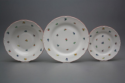Plate set Ofelia Sprays 24-piece BCL č.1