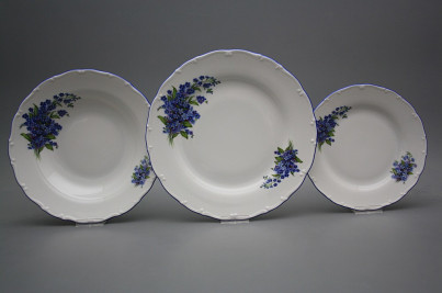 Plate set Ofelia Forget-me-not 12-piece DAL č.1