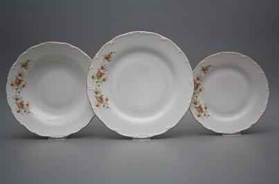 Plate set Ofelia Tea roses 18-piece HHL č.1