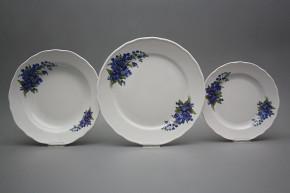 Plate set Rokoko Forget-me-not 24-piece DBB