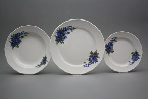 Plate set Rokoko Forget-me-not 36-piece DBB