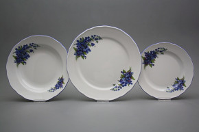 Plate set Rokoko Forget-me-not 18-piece DAL
